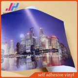 Self Adhesive Vinyl for Printing Ink