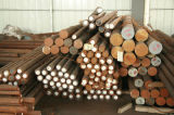 Tool Steel (Cr12MoV / D2 / SKD11)