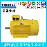 Three Phase Electric AC Motor Manufacturer