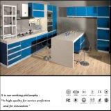 Modular UV Blue Kitchen Cabinet (ZH065)