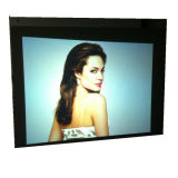 HD Gray Rear Projection Film for Advertising Glass Window Display