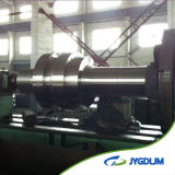 DIN1.4541 Forging and 25crmov Casting Steel Roller
