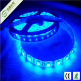 Epistar 5050 LED Strip High Quality Best Price (ST-FLS-5050-60-RGB-IP33)