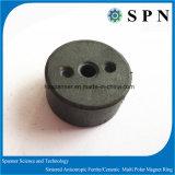 Ceramic Ferrite Magnet for Stepping Motor