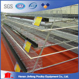 Automatic Chicken Cgae System From China