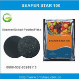 Seaweed Extract Fertilizer From Ascophyllum Nodosum