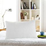 Wholesale Beautiful Quilting Spacewalk Pillow