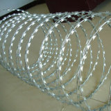 Hot Dipped Galvanized Cross Type Bto22 Razor Barbed Wire Fence
