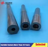 Carbide Internal Threaded Boring Bar for Lathe Tools