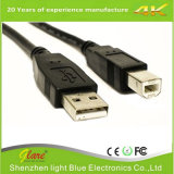 Shenzhen Factory Selling Black PVC USB Am to Bm Cable