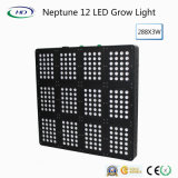 Neptune 12 863W LED Grow Light for Commercial Cultivation