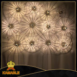 Hotel Project Metal Decorative Wall Light (KW17-121)