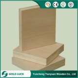 2mm - 25mm Okoume/Bintangor/Birch Pinefurniture Frade Commercial Plywood