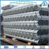 Galvanized or Black Scaffolding Pipes (ZL-SP)