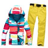 High Quality Outer Wear Windproof Waterproof Women Ski Jacket
