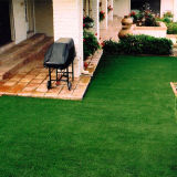 Outdoor and Indoor No-Need Water Graden Artificial Grass