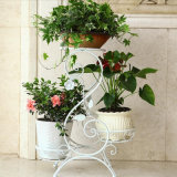Hot Selling Metal Iron Flower Planter for Home Decoration