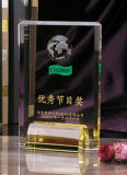 2017 China Style Hot Sales Personalized Crystal Achievement Shield Trophy Award