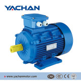 CE Approved Ms Series Electric Motor Price