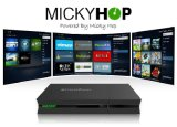 Combo DVB and IPTV Box with 64 Bit A53 Processor DVB-S2 + T2 + Cable