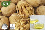 Pure & Natural Walnut Oi Cold Pressed; CAS No.: 8024-09-7
