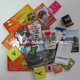 Custom Plastic/Polyresin/Soft Rubber/PVC Fridge Magnet as Souvenir