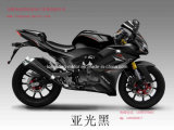Racing Bike (Horizon 250)