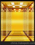 Fjzy-High Quality and Safety Passenger Elevator Fj-15139