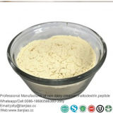 Guangzhou Manufacturer of Maltose Powder with Flavours