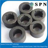 Permanent Ferrite / Sintered Ferrite Magne/Ceramict for Rotor