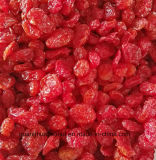 Best Quality Dired Tomato Cherry