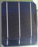 High Quality 50W- 320W Germany Bosch Mono Solar Module