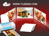 260g 4r & A4 RC Glossy Injket Photo Paper