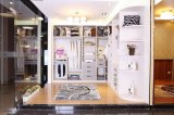 Walk in Closet Bedroom Furniture with High Quality and Unique Style