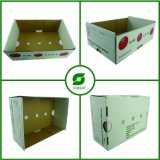 White Vegetable and Fruit Cardboard Box (FP3034)