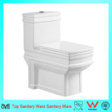 Hot Sale Washdown One-Piece Toilet to Middle East Market