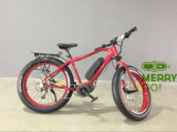 High Quality Ce Approved Center Motor Electric Fat Tire Bike