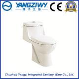 Washdown Ceramic One Piece Toilet