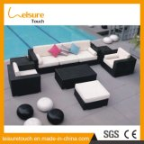 Hot Sale! Simple Outdoor /Hotel Rattan /Wicker Sectional/Combined Sofa/Lounge Set Open Air Garden Furniture
