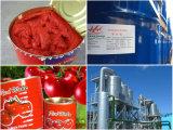 Canned Tomato Paste/Tomato Sauce/Tomato Ketchup/Tomato Puree