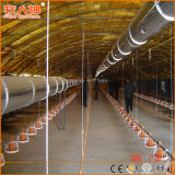 Superherdsman Steel Structure Designed Poultry Farming House
