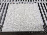 G603 Light Grey Granite Bushhammered Tiles for Flooring