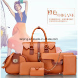 Bw1-137 South-Africa Medium Wholesale Fashion Shells Handbag Messenger Ziplock Bag