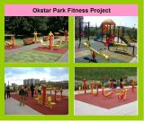 GS/TUV Approval Outdoor Fitness Equipment for Park (ST-C01X)