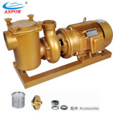 Durable High Performance Copper Swimming Pool Pumps, Water Pumps (BP)