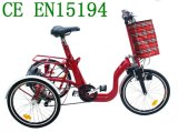 2017 New Folding Electric Trikes with 3 Speed Gears (SL-027)