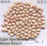 New Crop LSKB Round Shape