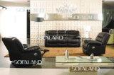 Promotional Leather Sofa Furniture (C874)