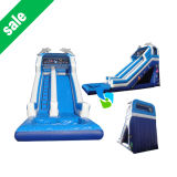 Giant Inflatable Water Slide for Adult (IS021803)