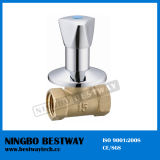 High Quality Brass Built in Valve (BW-S13)